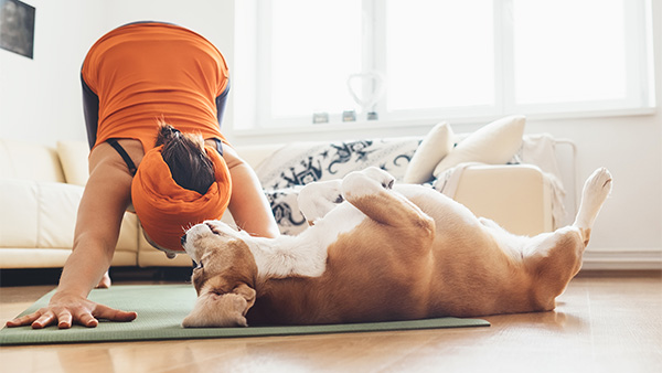 woman doing yoga in her home with dog