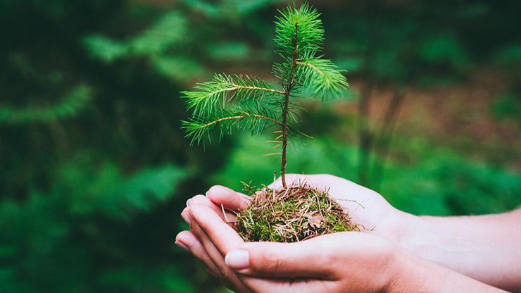 Responsabilidad ambiental, social y de gobierno corporativo