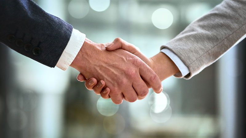 socios proveedores