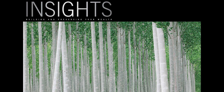 Revista Insights de primavera de 2013