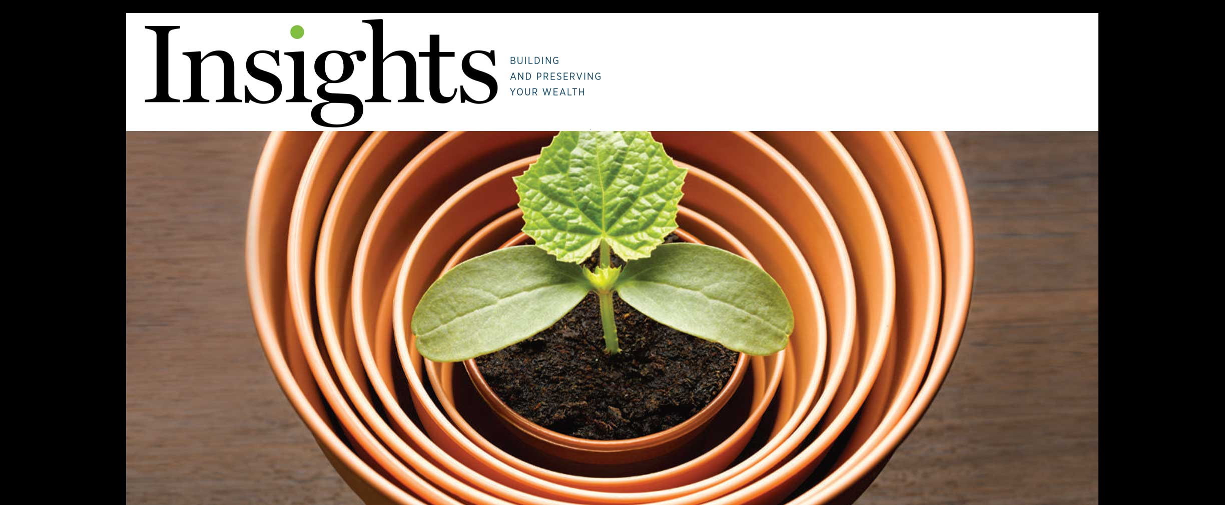 Insights Magazine Spring 2016 Growing Your Next Million