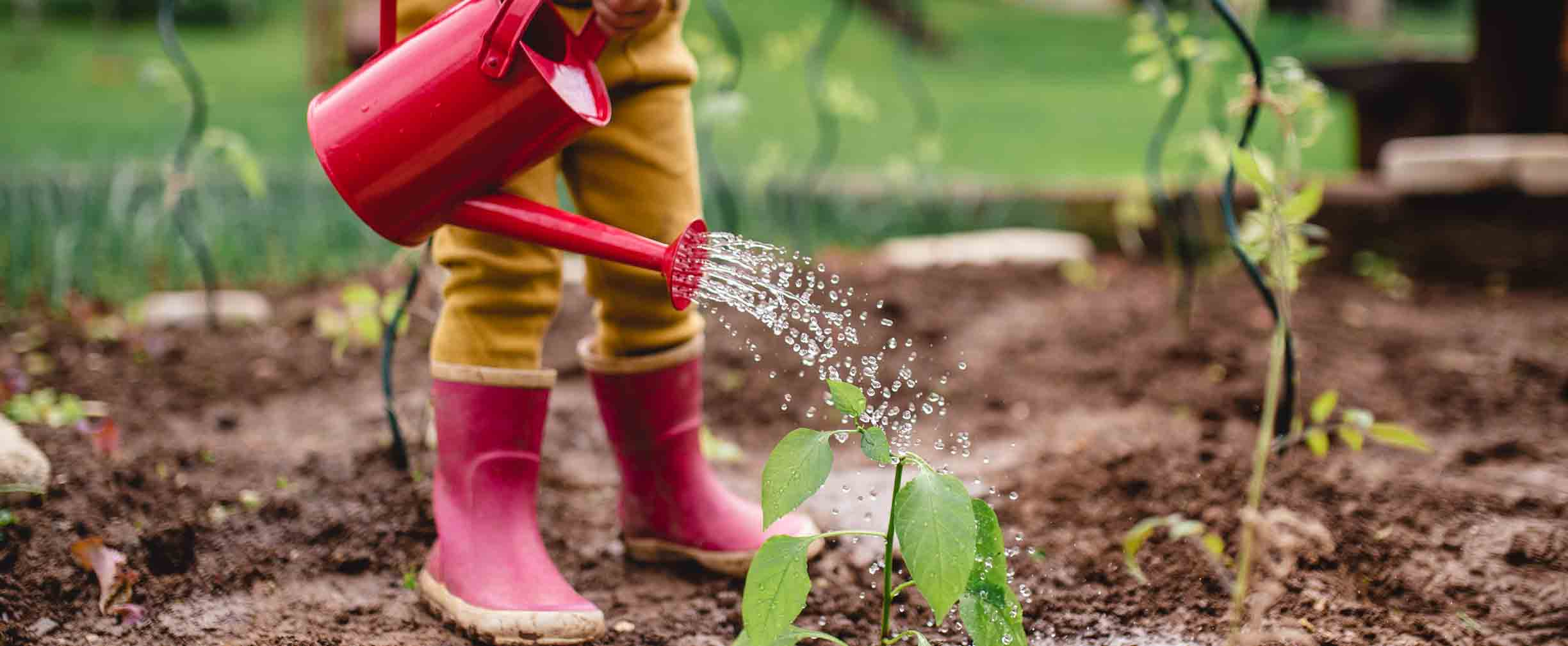 child in rainboots waters plant