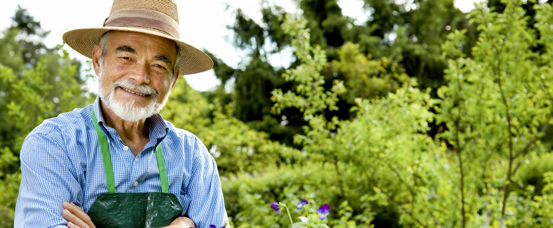 Diseñar un plan de ingresos para la jubilación