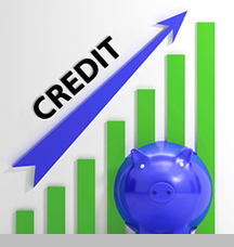 Building Credit Checklist