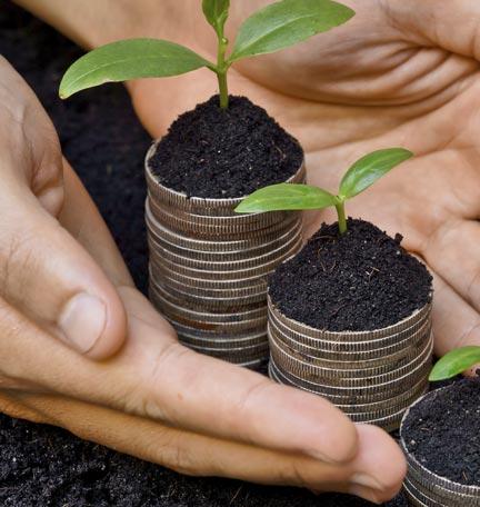 Crecimiento sostenible