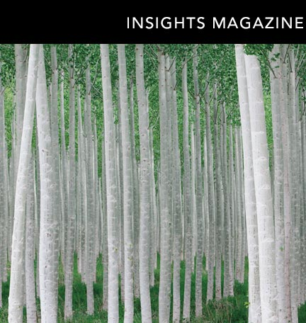 Insights Magazine Spring 2013